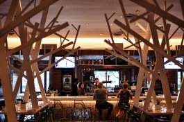 Through the cedar grove, the bar!